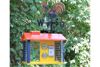 Weather Station. with instruments and weathercock